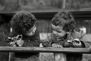 Lettera dedicata a un fratello