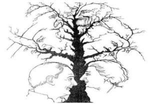 illusione ottica delle facce