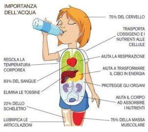 bere molta acqua aiuta a dimagrire