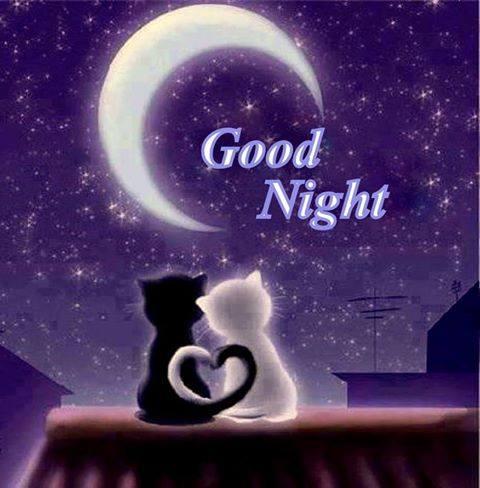Frasi Romantiche Per Augurare La Buonanotte Frasi