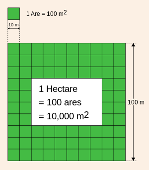 Quanto misura un ettaro in metri quadri frasi aforismi for Calcolo metri quadri commerciali