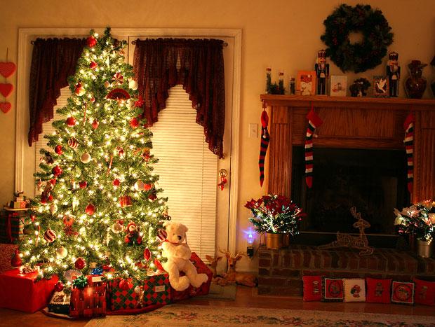 Albero Di Natale Frasi.Perche Nel Periodo Natalizio Si Fa L Albero Di Natale Notiziesecche Frasi Aforismi E Citazioni