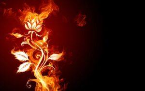 Frasi e pensieri sul fuoco