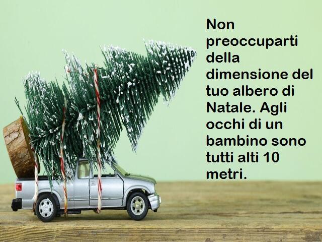 frasi su alberi