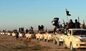 Notizie, curiosità e informazioni sui terroristi dell' Isis