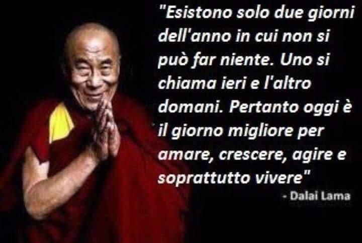 Amato Dalai-Lama frasi vivere - Frasi, aforismi e citazioni RM19