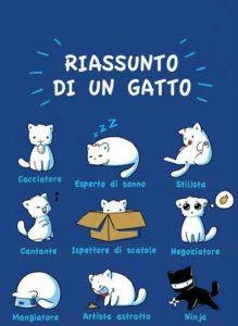 Le più belle frasi di tutti i tempi dedicate ai gatti